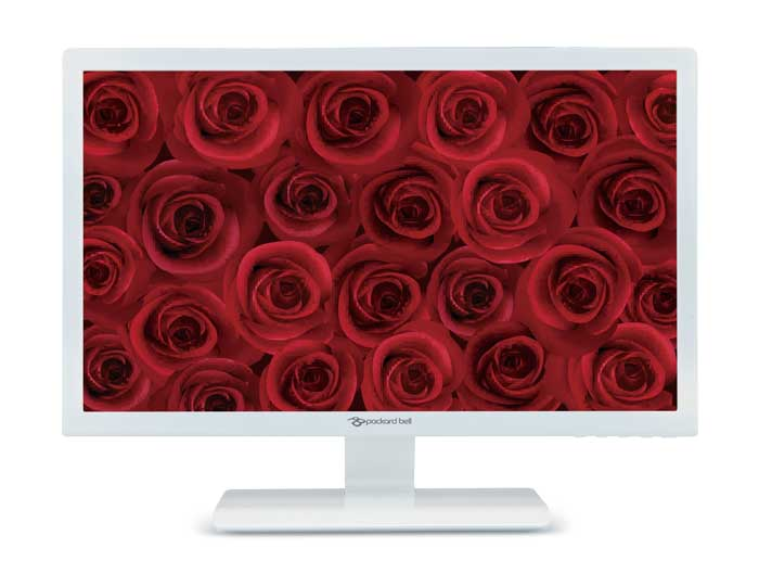 Monitor LED HD Packard Bell Maestro 240