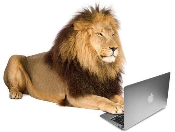 lion_mac