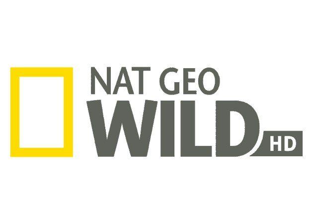 Nat Geo Wild HD y Syfy HD, dos nuevos canales HD de Digital+