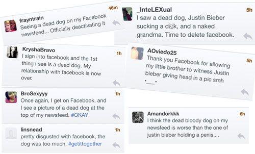 Porno y gore inundan Facebook esta mañana debido a hackeo 28