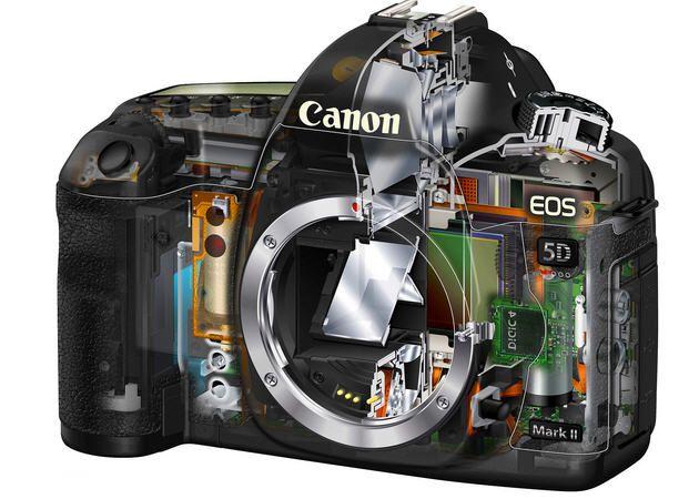 La nueva Canon 5D Mark III o la 7D Mark II, avistada