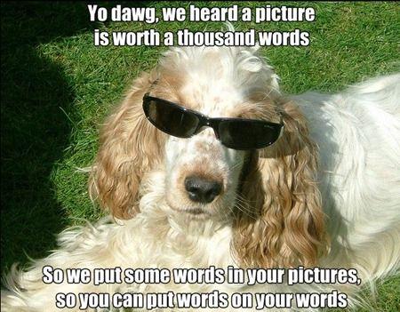 Google+ ya permite crear Memes añadiendo texto sobre las imágenes 30