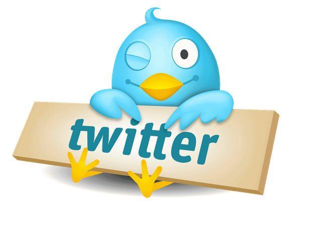 Un pajaro con el logo de Twitter
