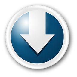 Orbit Downloader 4.1.6 30