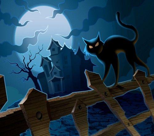 Halloween-Cat