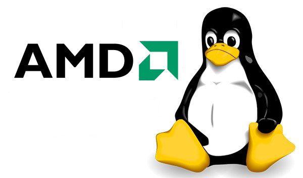 AMD cierra el laboratorio de desarrollo del kernel Linux 28