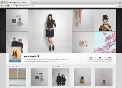 Instagram da el salto de los móviles a la web: Instragram Profiles 31