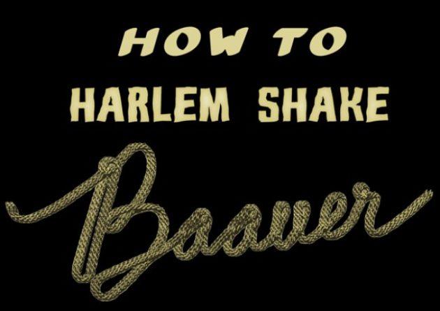 Harlem Shake, rumbo a destronar a Gangnam Style 33