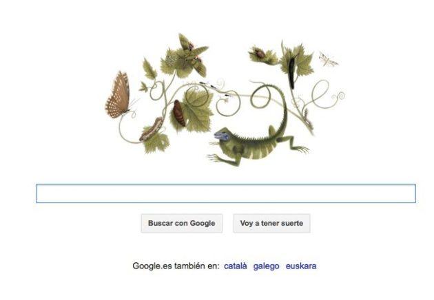 Google homenajea a Anna Maria Sibylla Merian con su Doodle 31