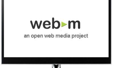FSF apoya el WebM de Google 41