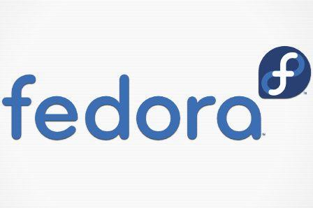 Fedora 19 29