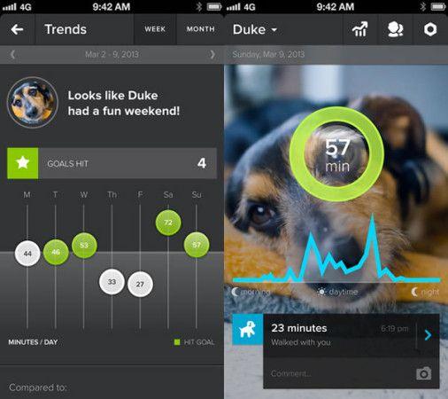 Whistle-dog-app-02