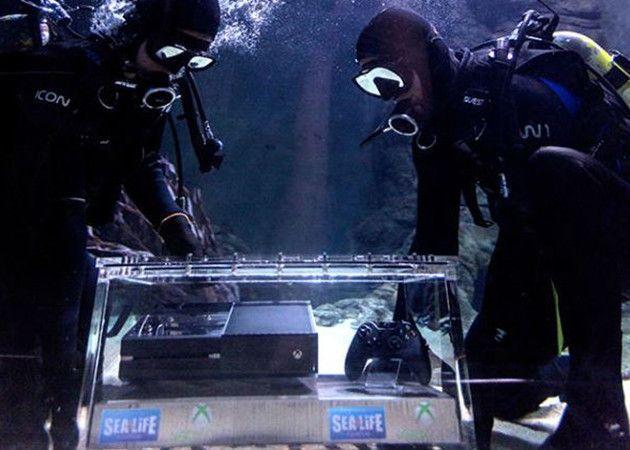 XboxOne-tiburones