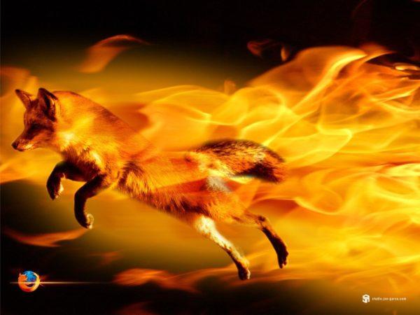 Firefox con Mozjpeg 321x