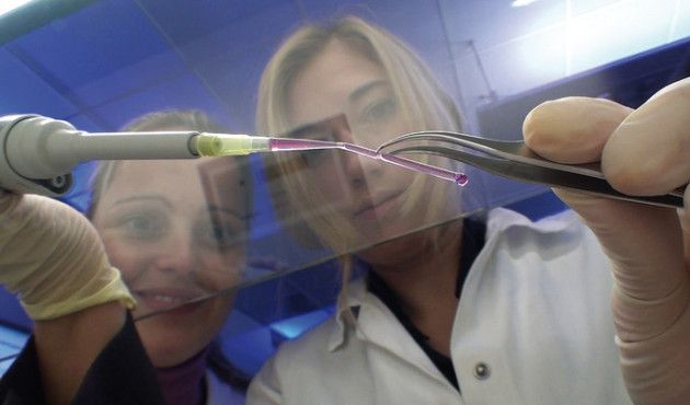 imprimir vasos sanguíneos
