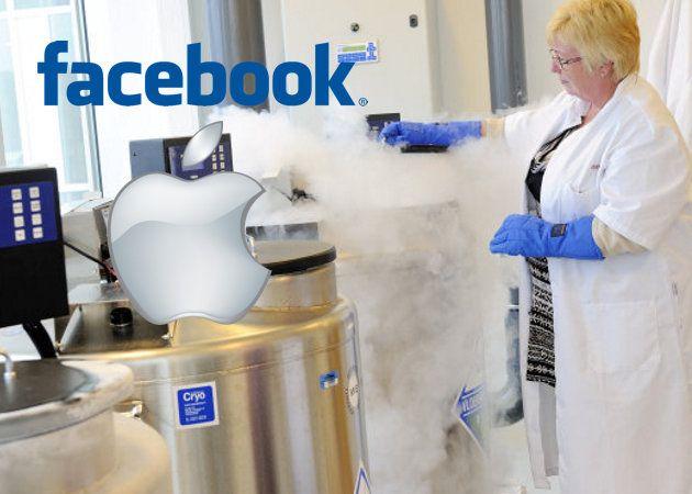 Facebook y Apple se ofrecen a pagar la congelación de los óvulos de sus empleadas