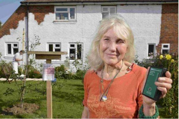 Anciana bloquea señal WiFi y móvil con pintura valorada en 6.000 dólares