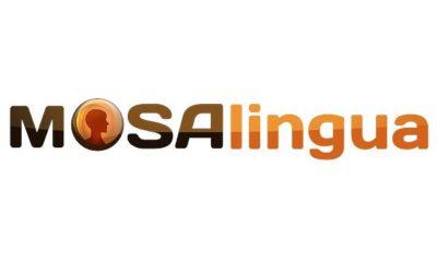 Aprende idiomas con MosaLingua 48