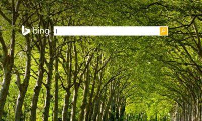 Bing alcanza el 20% de cuota en búsquedas desde PC en Estados Unidos