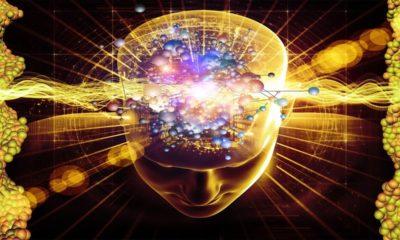 Tu cerebro sería la contraseña más segura del futuro 62