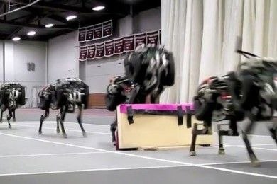 El robot Cheetah del MIT ya salta obstáculos