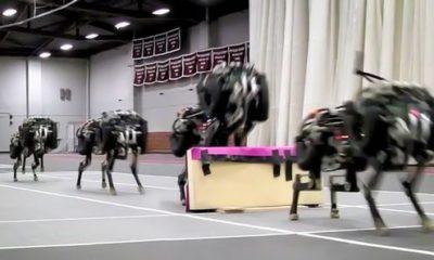 El robot Cheetah del MIT ya salta obstáculos 103