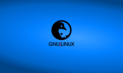 AMD ha lanzado nuevos drivers para Linux 4.2 51