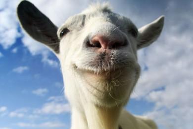 Goat Simulator se estrena mañana en PlayStation