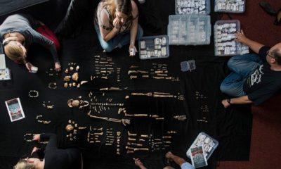 Homo Naledi, nuestro antepasado desconocido 28