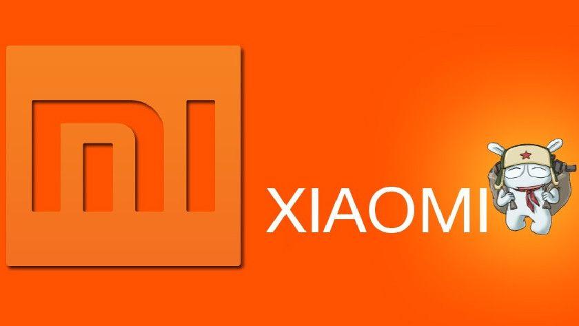 Portátil Xiaomi con Linux ¿En desarrollo? 29