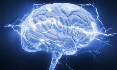 Interfaz cerebral no invasiva permite compartir pensamientos 62