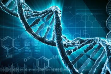 El arca helada de Noé existe y guarda muchos tipos de ADN