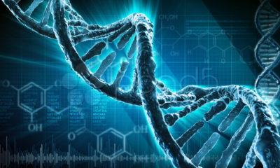 El arca helada de Noé existe y guarda muchos tipos de ADN 76