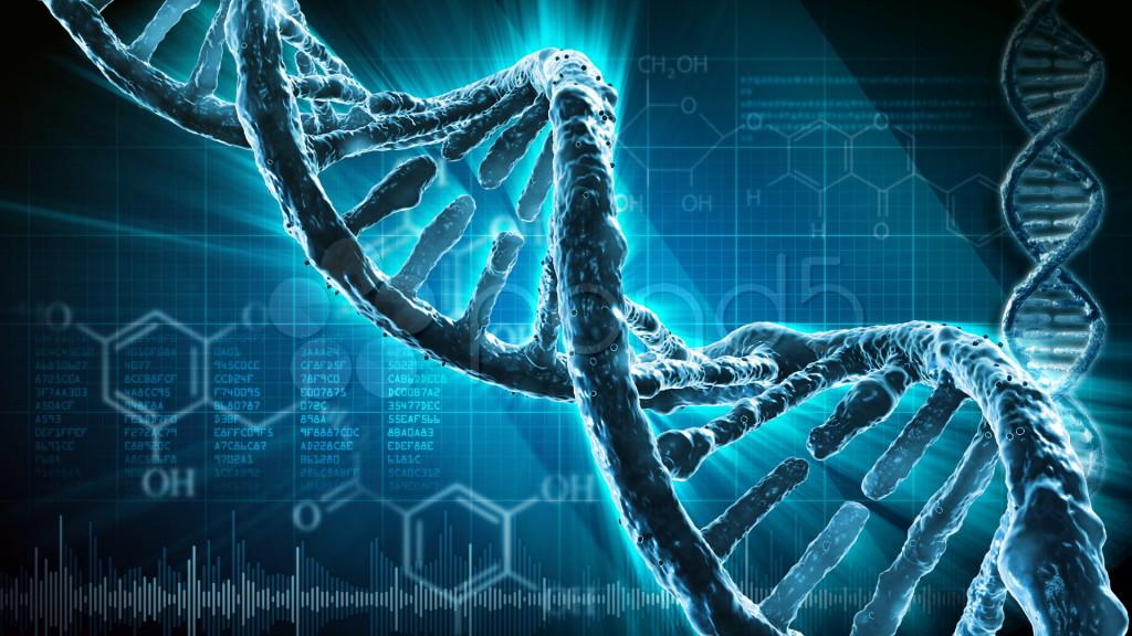 El arca helada de Noé existe y guarda muchos tipos de ADN 29