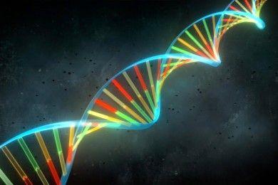 Jugar con los genes, un milagro criticado