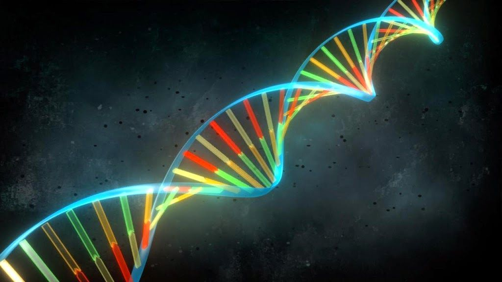 Jugar con los genes, un milagro criticado 30