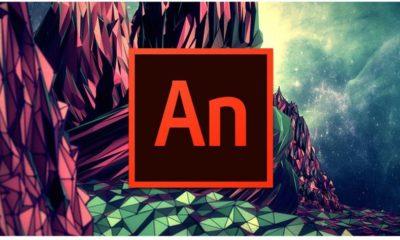 Adobe Flash está muerto pero de momento solo en el nombre 69