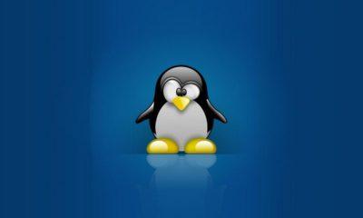 Hackea Linux pulsando retroceso 28 veces 29