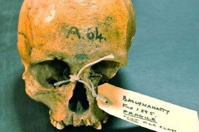 Secuencian ADN de calavera humana con 5.200 años