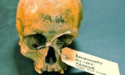Secuencian ADN de calavera humana con 5.200 años 72