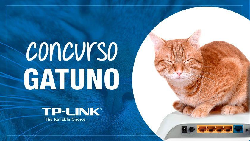 En el nuevo concurso de TP-Link los gatos toman el mando 29