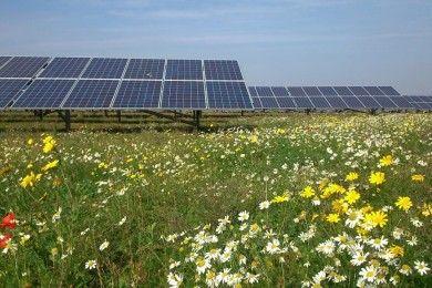 Pueblo rechaza granja solar por si consume todo el Sol