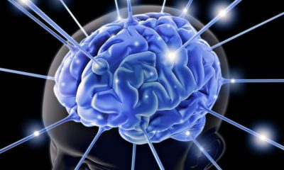 Entender mejor el cerebro, clave para la inteligencia artificial 114