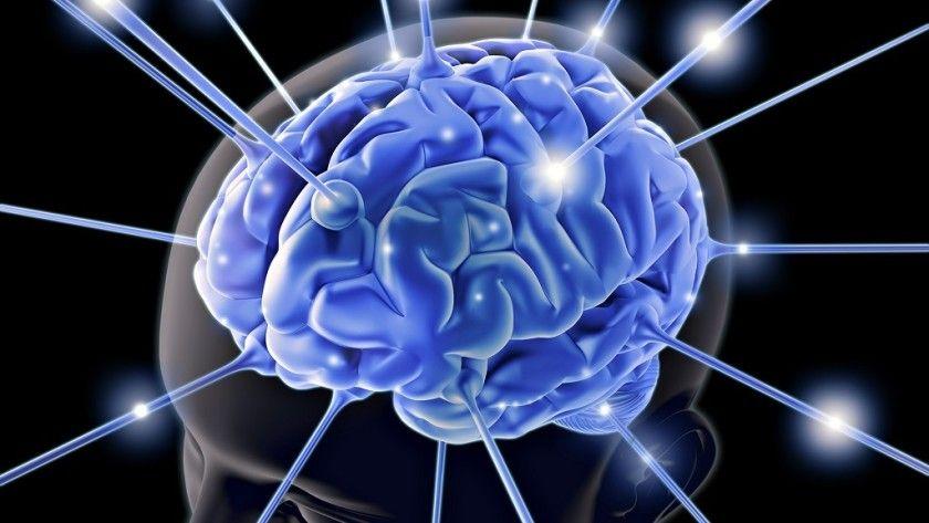 Entender mejor el cerebro, clave para la inteligencia artificial