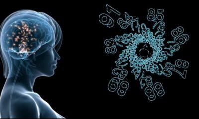 Científicos consiguen leer la mente en tiempo real 109