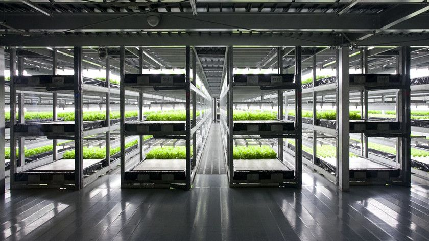 granja robótica