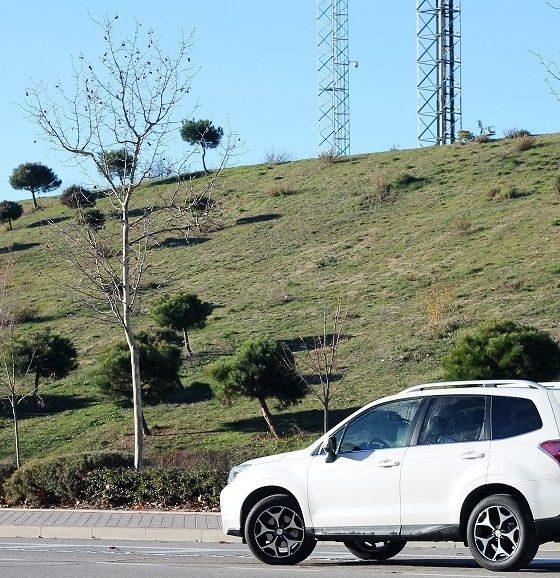 Subaru Forester: valor sólido 31