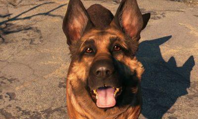 Juega a Fallout 4 como Albóndiga gracias a un mod 55