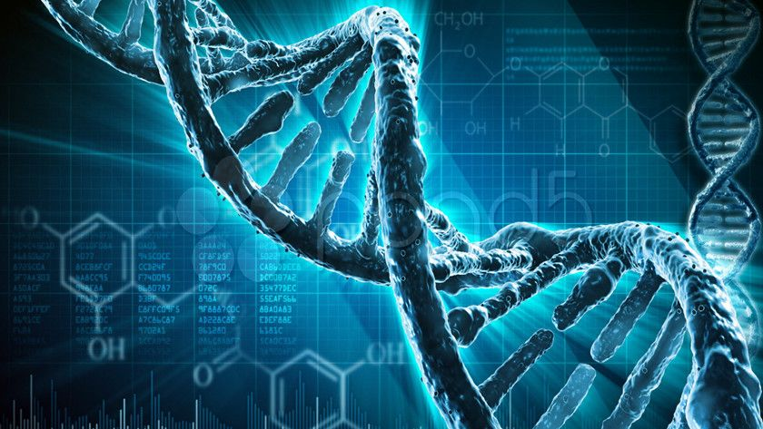 almacenamiento ADN