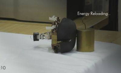 JumpRoACH, la cucaracha robótica que puede saltar 31